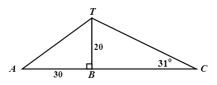 Basic Trigonometry Practice9